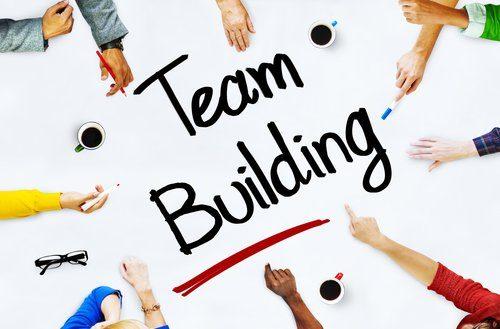 Pelatihan Team Building